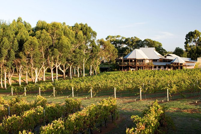 Margaret River and Geographe Bay Region Day Trip from Perth - Perisher Accommodation