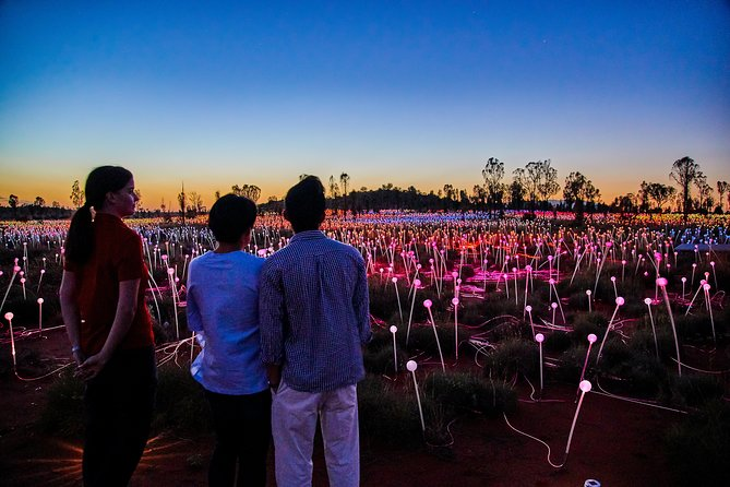 Uluru Field of Light Sunrise Tour - Perisher Accommodation