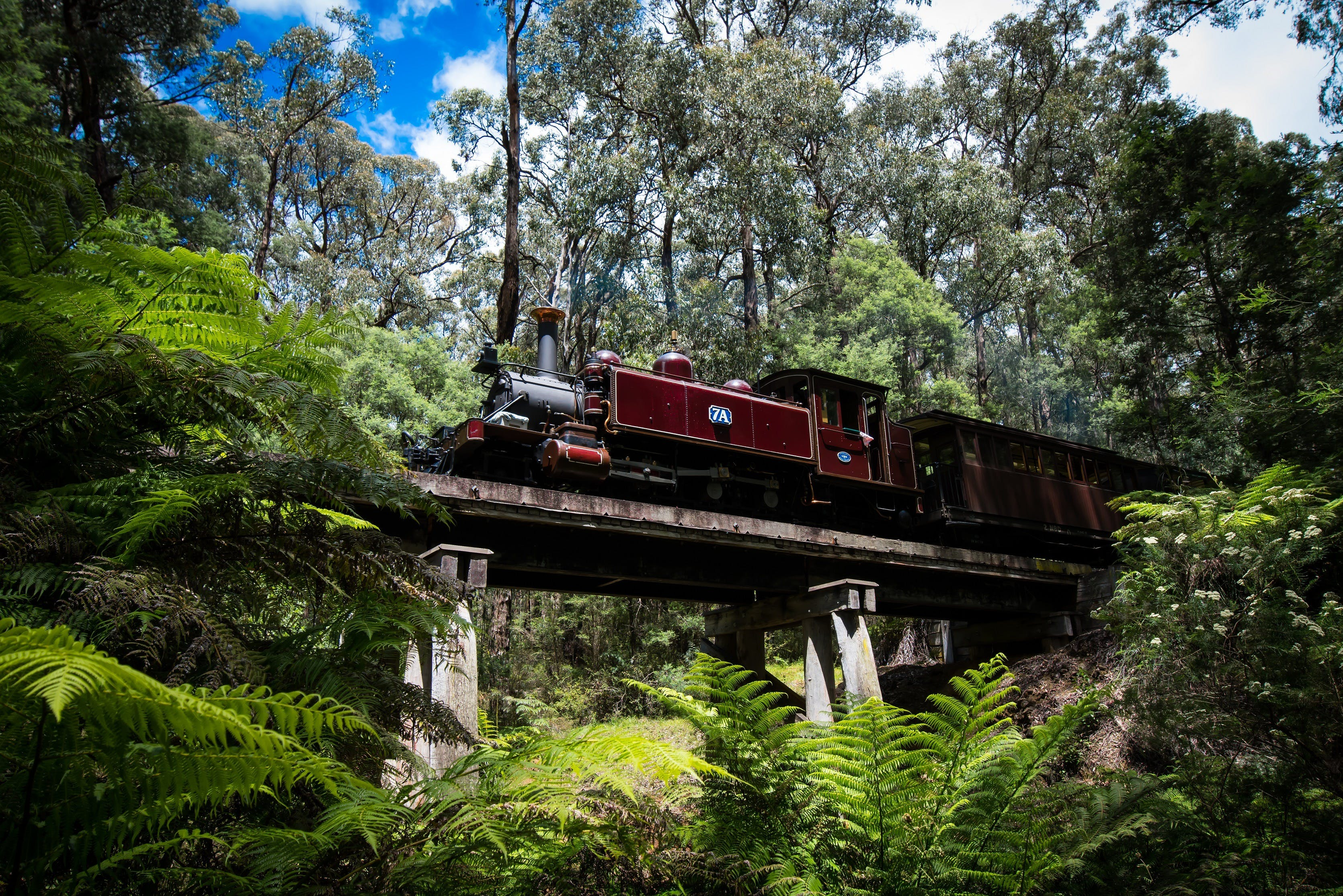Puffing Billy Railway - Perisher Accommodation