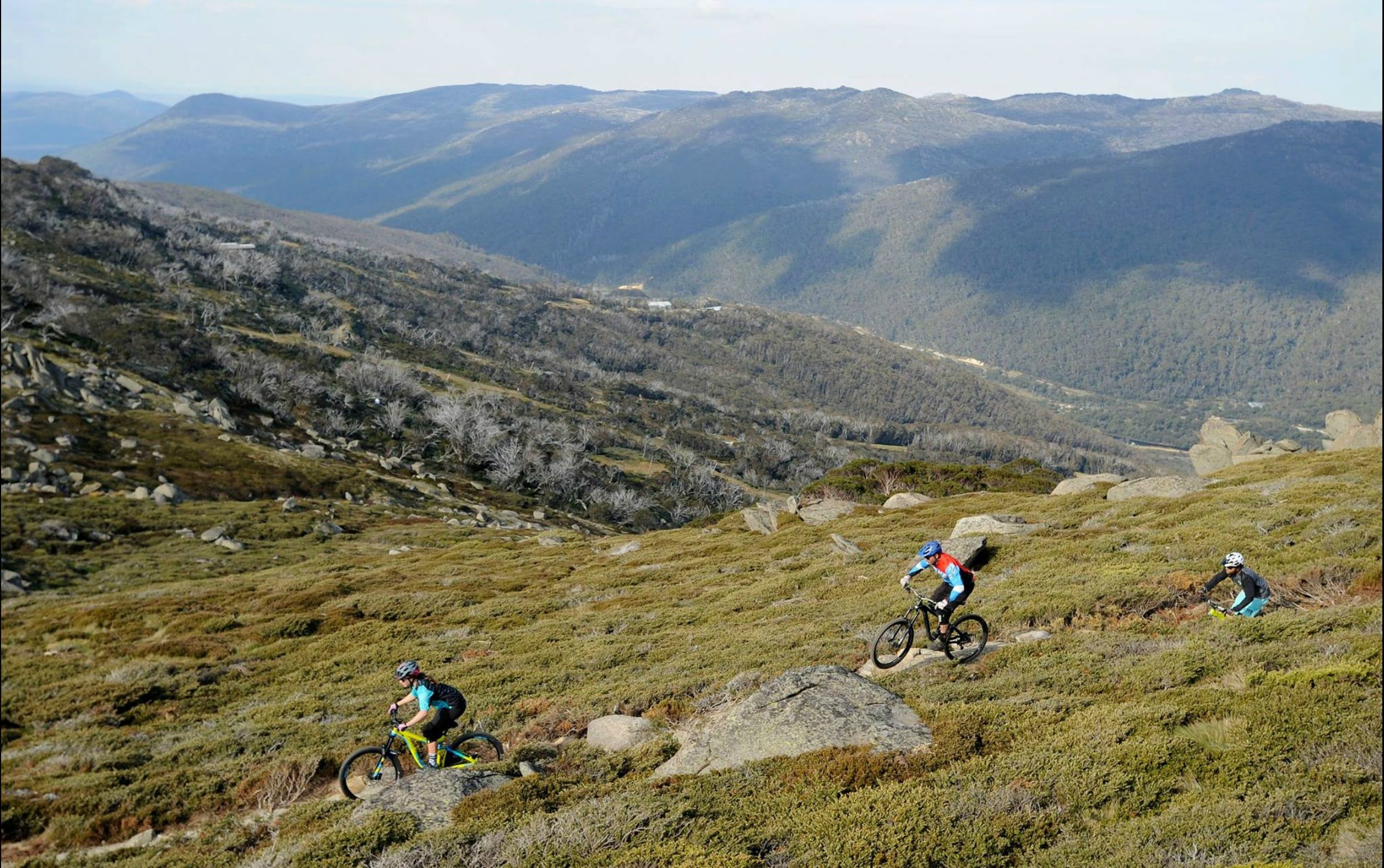 Thredbo Mountain Biking - Perisher Accommodation
