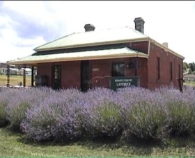 Lavender House in Railway Park - Perisher Accommodation