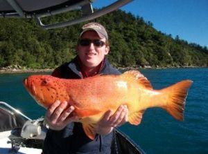 Gone Fishing by Coral Sea Fishing Charters Airlie Beach - Perisher Accommodation