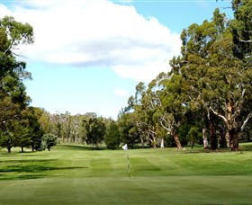 Cooma Golf Club - Perisher Accommodation