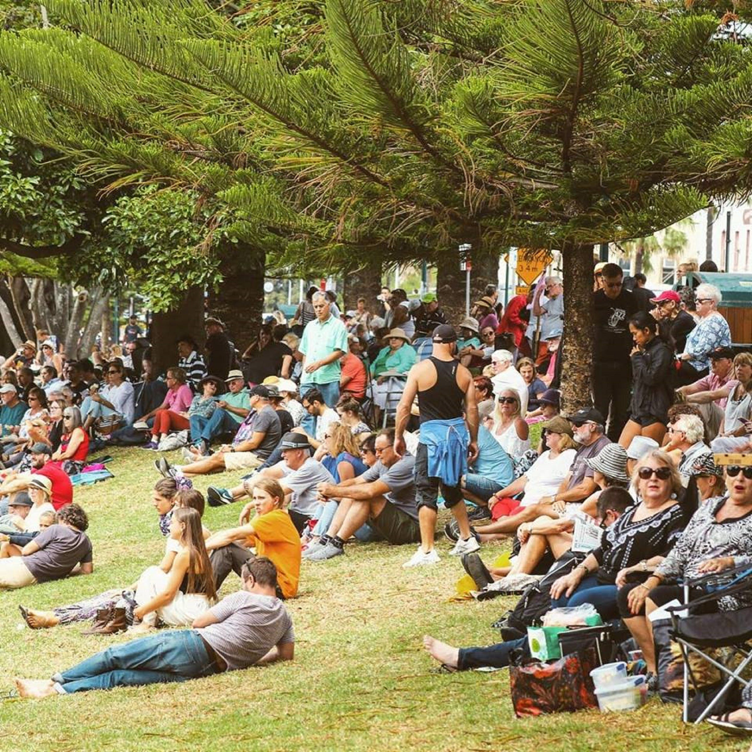 Music in the Park - Perisher Accommodation