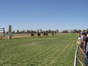 Balranald Races -Derby Day - Perisher Accommodation