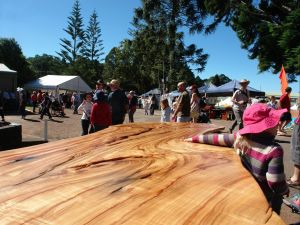 Maleny Wood Expo From Seed to Fine Furniture - Perisher Accommodation