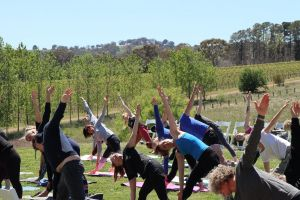 Yoga in the Vines - Perisher Accommodation